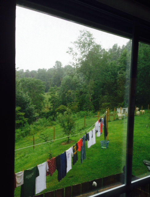 Laundry Hanging In the Rain