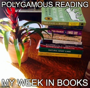 Polygamous Reading