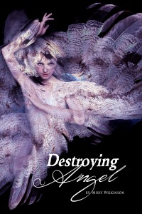 Destroying Angel by Missy Wilkinson