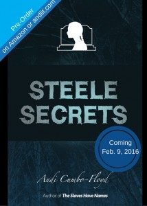 Steele Secrets by Andi Cumbo-Floyd - Coming Feb. 9, 2016