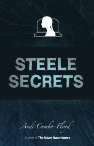 Steele Secrets by Andi Cumbo-Floyd