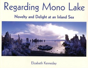 I Became Quite Interested: An Interview with Author/Photographer Elizabeth Kenneday