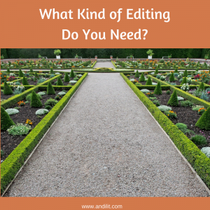 What Kind of Editing Do You Need?