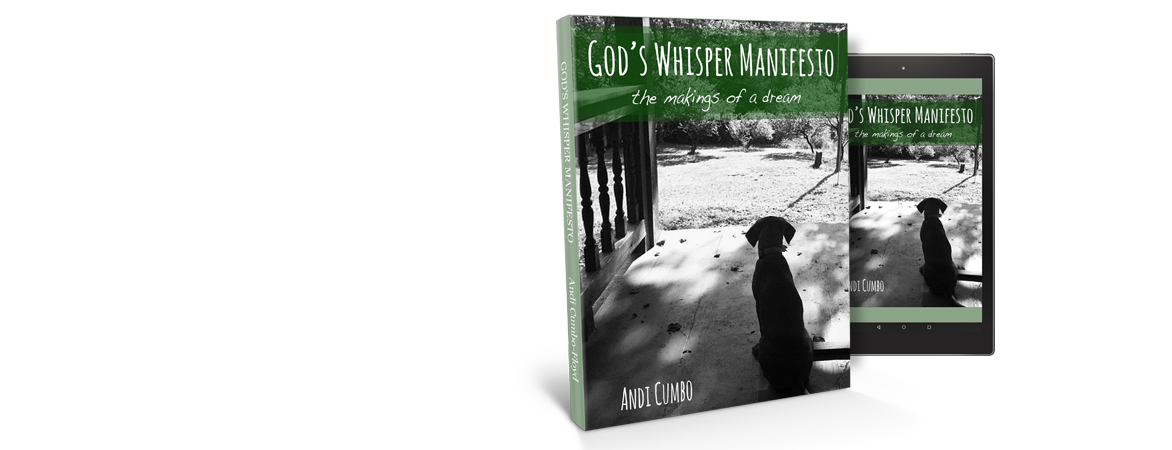 God's Whisper Manifesto Book Cover