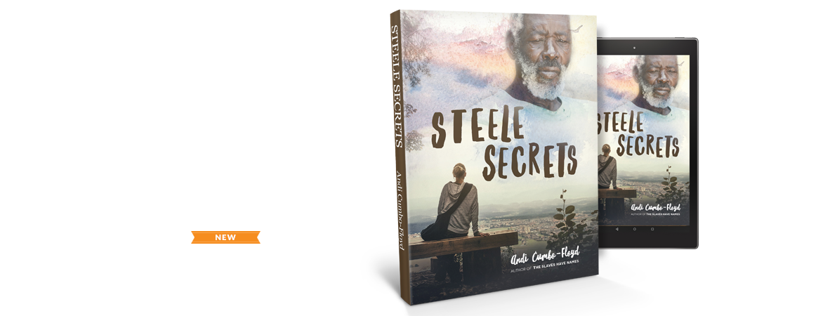 Steele Secrets Book Cover