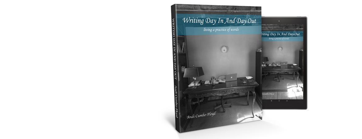 Writing Day In Day Out Book Cover