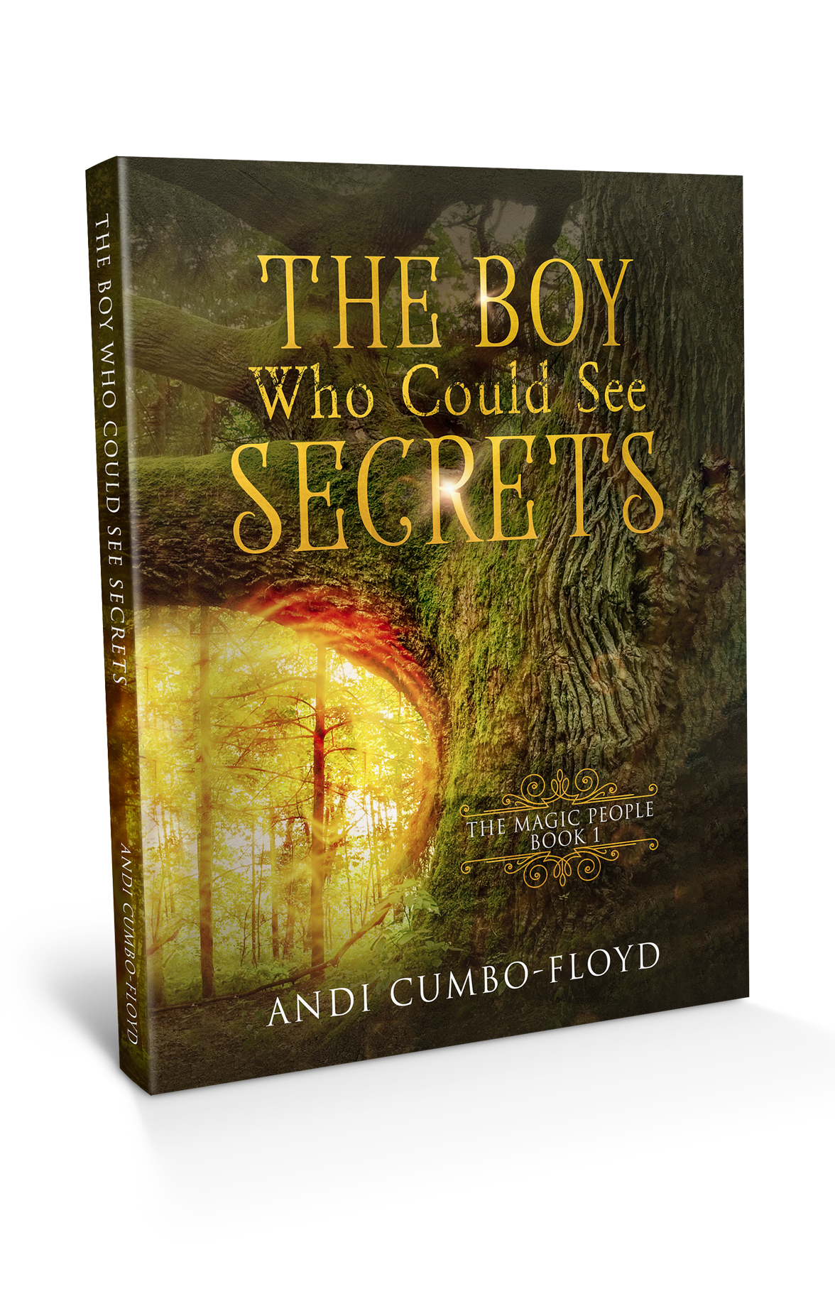 The Boy Who See Secrets book cover