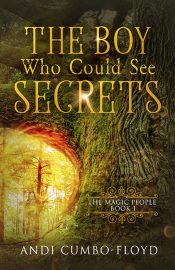 The Boy Who Could See Secrets book cover