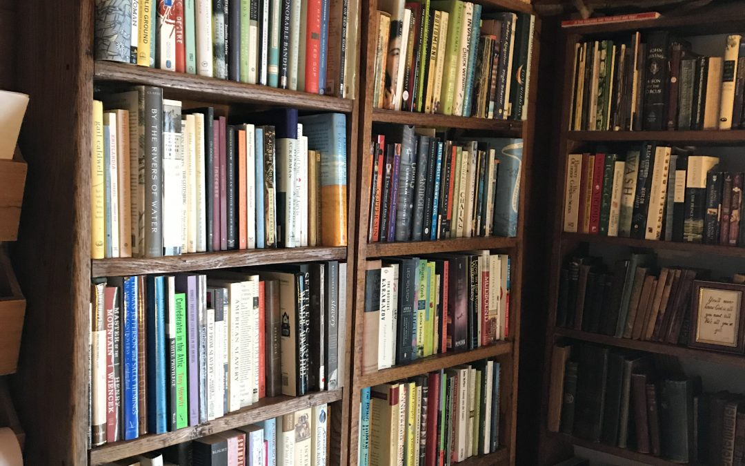 Reading the Books I Own – My Plan for 2020